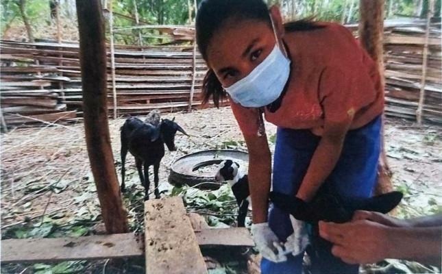 Di Tengah PPKM, Siswa SMK-PP Negeri Kupang Produktif Laksanakan Praktik Kerja Lapang